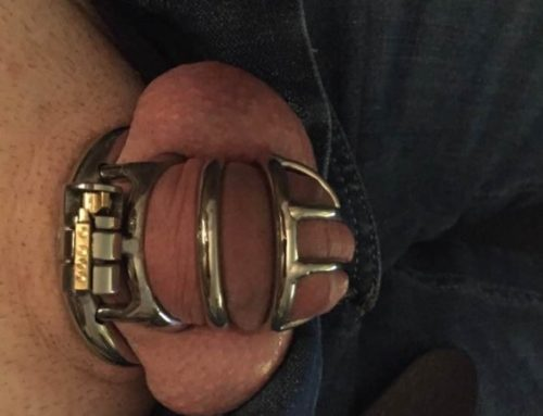 The golden opportunity for my chastity slave